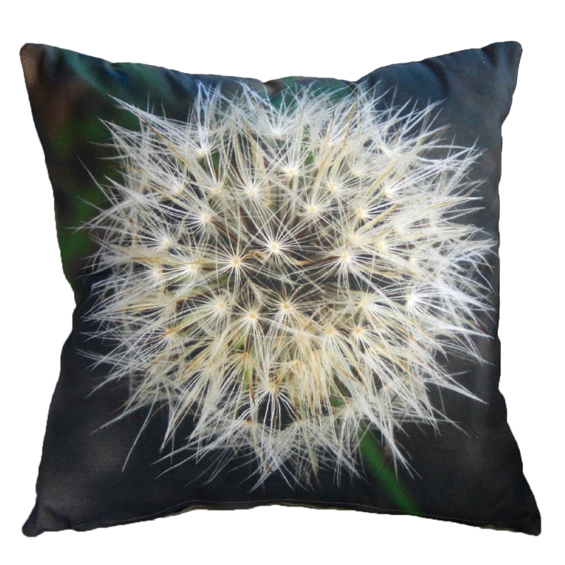 Botanical Cushions Port Elizabeth
